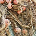 Barletta, il settore della pesca in piazza per rimanere a galla
