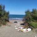 Rifiuti abbandonati in spiaggia a Barletta: «Uno scempio e nessuno vigila»