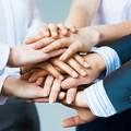 Secondo Coldiretti Bat cresce l'occupazione e le imprese under 35