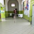 Scrutatori elezioni del 20 e 21 settembre: saranno sorteggiati il 28 agosto