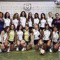 Prima Div. Femminile, l'Axia volley sfida l'Alberobello
