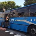 Modifiche percorso STP a Barletta, alcune rettifiche