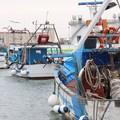 «Non è solo il porto di Barletta, ma il riferimento di un intero territorio»