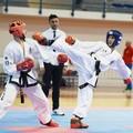Taekwondo, trionfo italiano al Challenge di Barletta