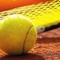 Due svedesi conquistano la terra rossa del torneo ATP di Barletta