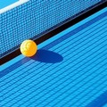 Tennistavolo, focus sul pongista italo-francesce Maurice Rotondo