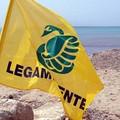 """""""Spiagge e fondali puliti """", due giornate dedicate alla costa di Barletta"""