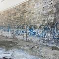 Tracce di selvaggi in via Mura San Cataldo