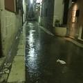 Via dei Campi, un fiume in pieno centro a Barletta