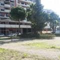 Riqualificazione area verde nella 167 di Barletta, consegnati i lavori