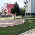 Regolamento del verde urbano, soddisfatta Legambiente Barletta