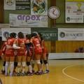 ASD Volley Barletta: serie C in attesa del testa a testa con il Fasano