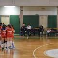 Progetto BAT Volley, domani la presentazione ufficiale delle squadre