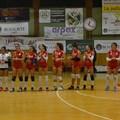 Boasorte Volley Barletta, gara ostica contro Bitonto