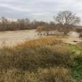 Esondato il fiume Ofanto, acqua e fango nelle campagne