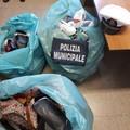 Mercato settimanale, ancora merce sequestrata dalla Polizia locale di Barletta