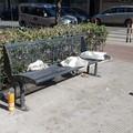 Picnic in via Vitrani, «ecco dove mangiare all'aperto a Barletta»