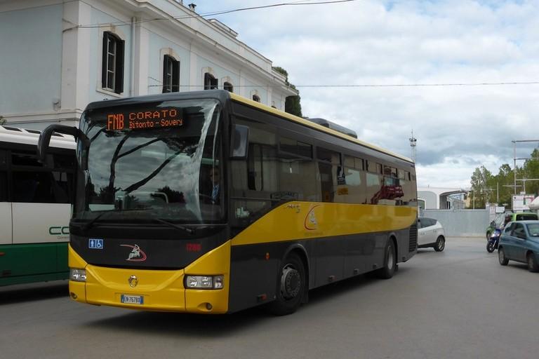 Bus Ferrotramviaria
