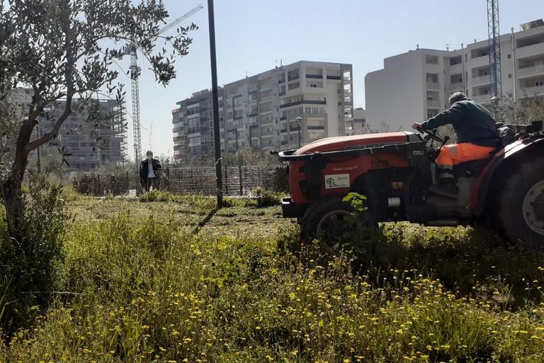 Parco Umanità, lavori di manutenzione