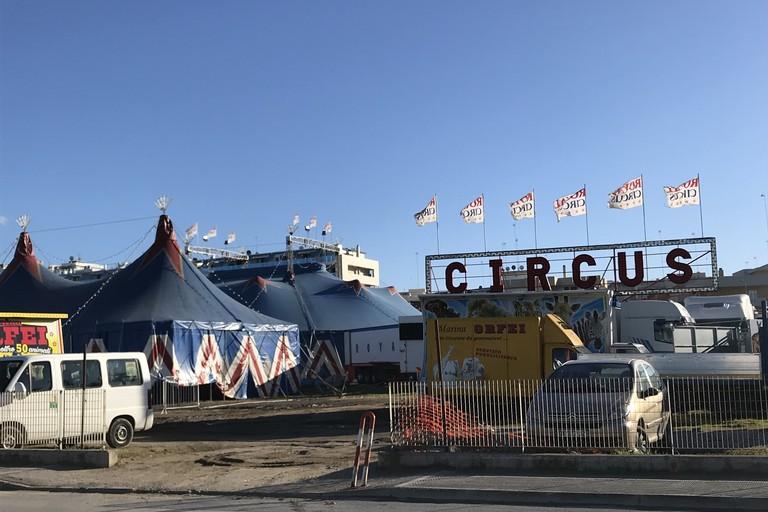 No al Circo a Barletta, la richiesta di boicottare lo spettacolo