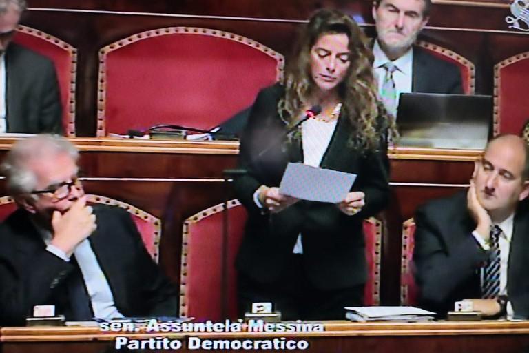 Assuntela Messina in Senato