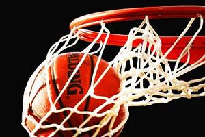 Basket retina