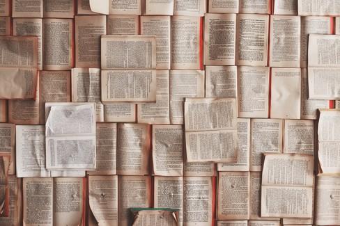 """Le attività della biblioteca  """"Loffredo """" di Barletta per la primavera"""