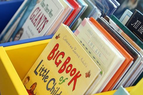 """La Biblioteca fuori di sé"""