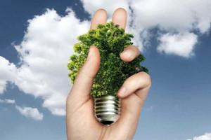 Mano Lampadina Biomassa