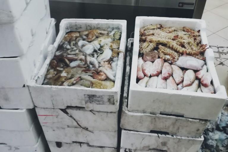 Oltre 430 kg di pesce donato dalla Capitaneria alla Caritas