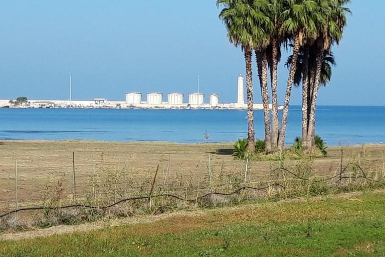 Rimosso il canneto selvatico lungo la costa di Levante