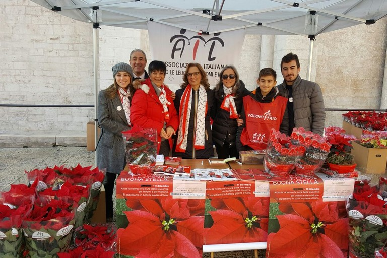 A Barletta tornano le Stelle di Natale con AIL